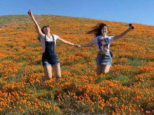 Two women jumping in poppy field